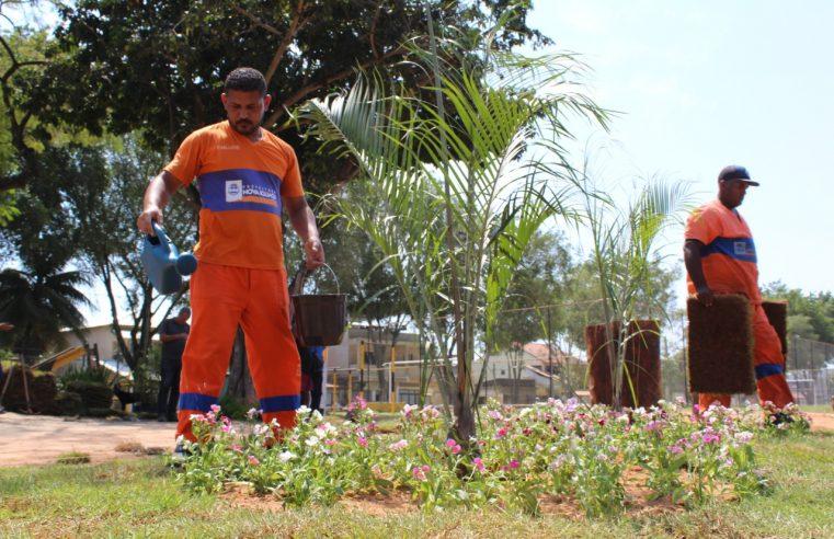 Emlurb transforma lixeira  em jardim em Corumbá