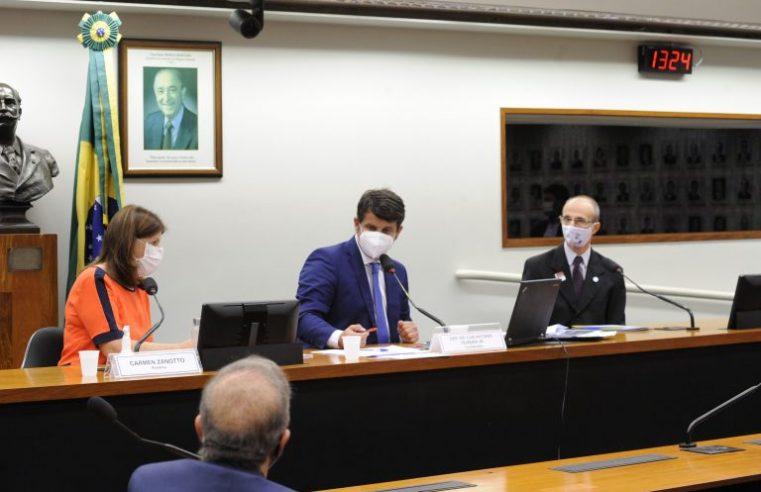 Volta às aulas em debate na Comissão  Externa do Coronavírus da Câmara