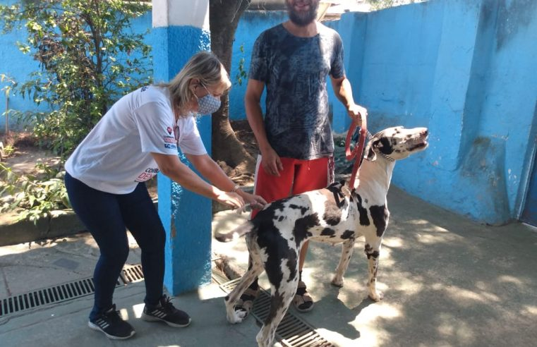 Duque de Caxias promove campanha de vacinação contra a raiva animal
