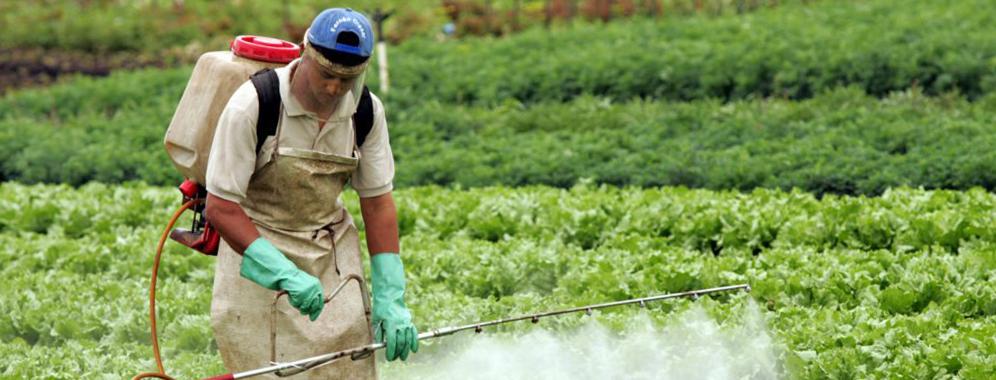 Controle de agrotóxicos do Estado  do Rio é destaque no Brasil